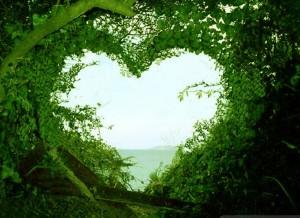 achtergrond hart